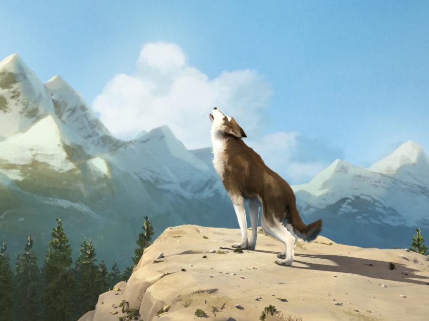 Die Abenteuer von Wolfsblut Filmbeschreibung